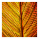 Earth tone brown Leaf texture art poster