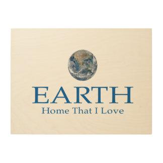 EARTH WALL ART