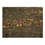'EARTH' written with fallen leaves that turn red Postcard