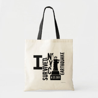 Earthquake NYC 2011 Bag 3