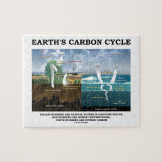 Earth's Carbon Cycle (Earth Science) Jigsaw Puzzle