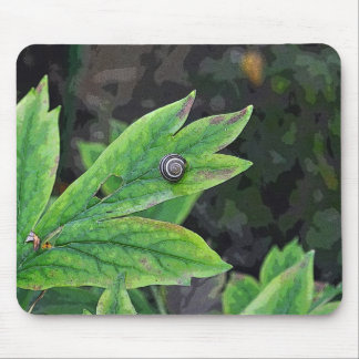 Earth's Tiny Creature Mouse Pad