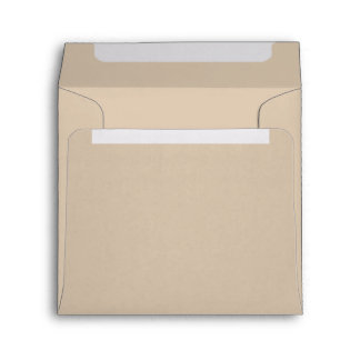 Earthy Beige Paper Envelopes