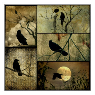 Earthy Crows Collage Poster