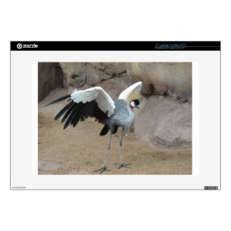 East African Crowned Crane Skin For Laptop