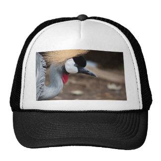 East African Crowned Crane Trucker Hat