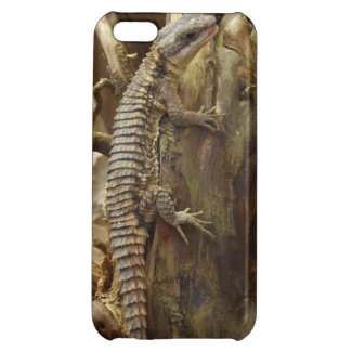 East African Spiny-Tailed Tropical Girdled Lizard Case For iPhone 5C
