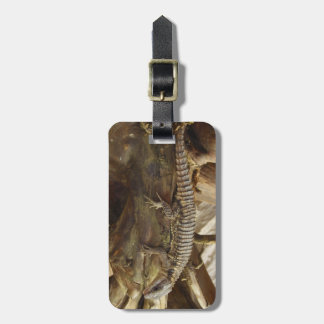 East African Spiny-Tailed Tropical Girdled Lizard Luggage Tag