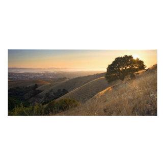 East Bay Hills in Summer Rack Card