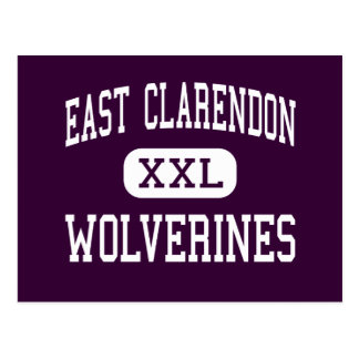 East Clarendon - Wolverines - High - Turbeville Postcard