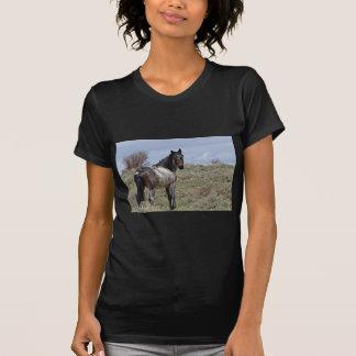 East Douglas/Piceance HMA Stallion T-Shirt