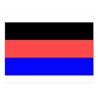 East Frisia (Germany) Flag Postcard