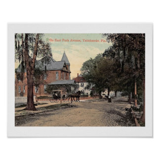East Park Ave., Tallahassee, Florida Vintage Poster