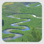 East River near the town of Crested Butte. Square Sticker