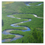 East River near the town of Crested Butte. Tile