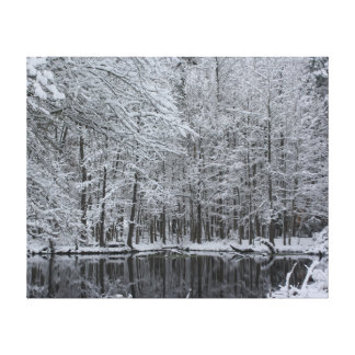 East Texas Winter Wonderland Wrapped Canvas