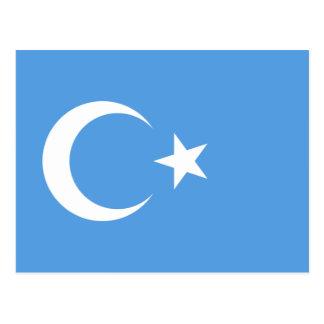 East Turkestan Uyghur Flag Postcard
