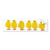 Easter baby chicks Bumper Sticker