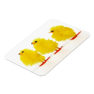 Easter baby chicks Flexible Magnet