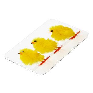 Easter baby chicks Flexible Magnet