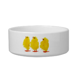 Easter baby chicks Pet Bowl