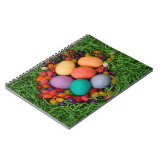 Easter Basket - Spring Colored Eggs Jelly Beans Note Books