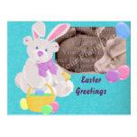 Easter Bear Postcard