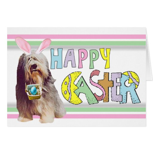 Easter Bearded Collie Card