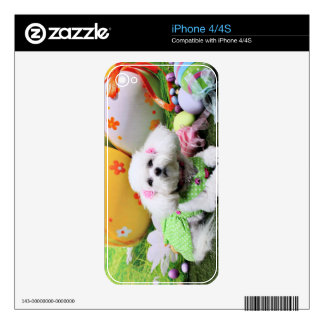 Easter - Bichon Frise - Mia Decals For The iPhone 4