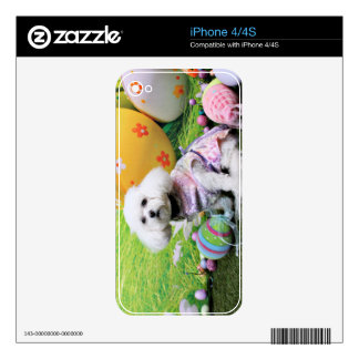 Easter - Bichon Frise - Mia iPhone 4 Decal
