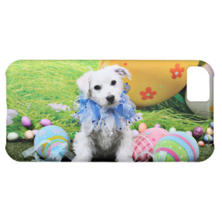 Easter - Bichon Frise X - Sammy Case For iPhone 5C