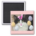 Easter Black and White Cat Fridge Magnets