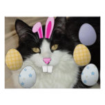 Easter Black and White Cat Poster
