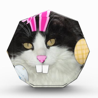 Easter Black and White Kitty Cat Acrylic Award