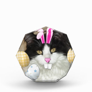 Easter Black and White Kitty Cat Award
