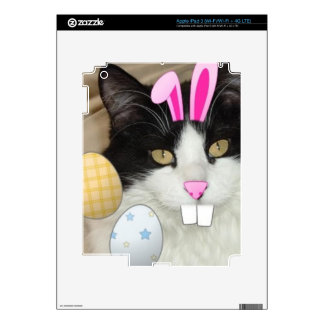 Easter Black and White Kitty Cat Decals For iPad 3