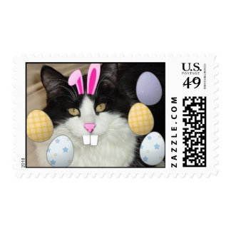 Easter Black and White Kitty Cat Postage