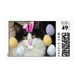 Easter Black and White Kitty Cat Stamp