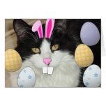 Easter Black & White Cat Greeting Card