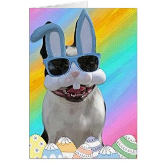 Easter Boston 1 Greeting Card