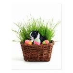 Easter Boston Terrier  dog Postcards