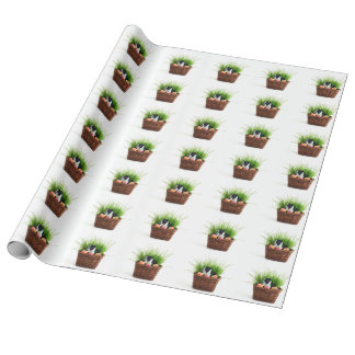 Easter Boston Terrier  dog wrapping paper