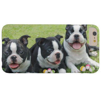 Easter Boston Terrier dogs iphone 6 plus case
