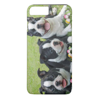 Easter Boston Terrier dogs iPhone 7 plus case