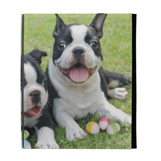 Easter Boston terriers iPad Folio Cover