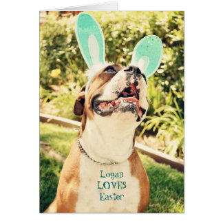 Easter Boxer Greeting Card