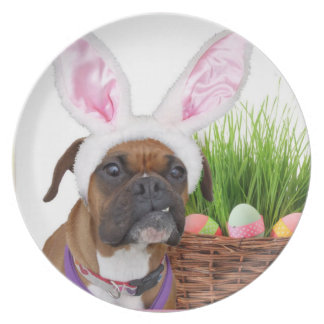 Easter boxer dog plates