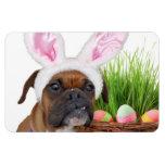 Easter boxer dog vinyl magnet