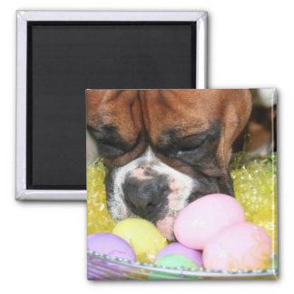 Easter Boxer magnet