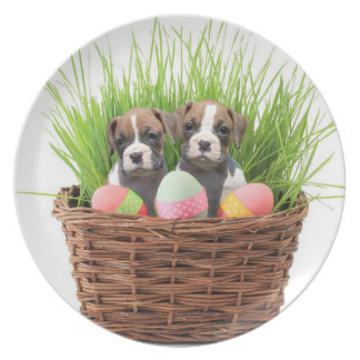 Easter boxer puppies melamine plate